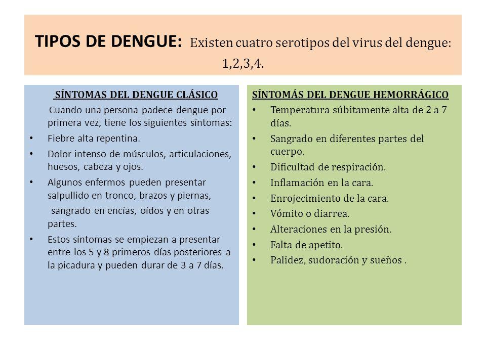TIPOS DE DENGUE: Existen cuatro serotipos del virus del dengue: 1,2,3,4.