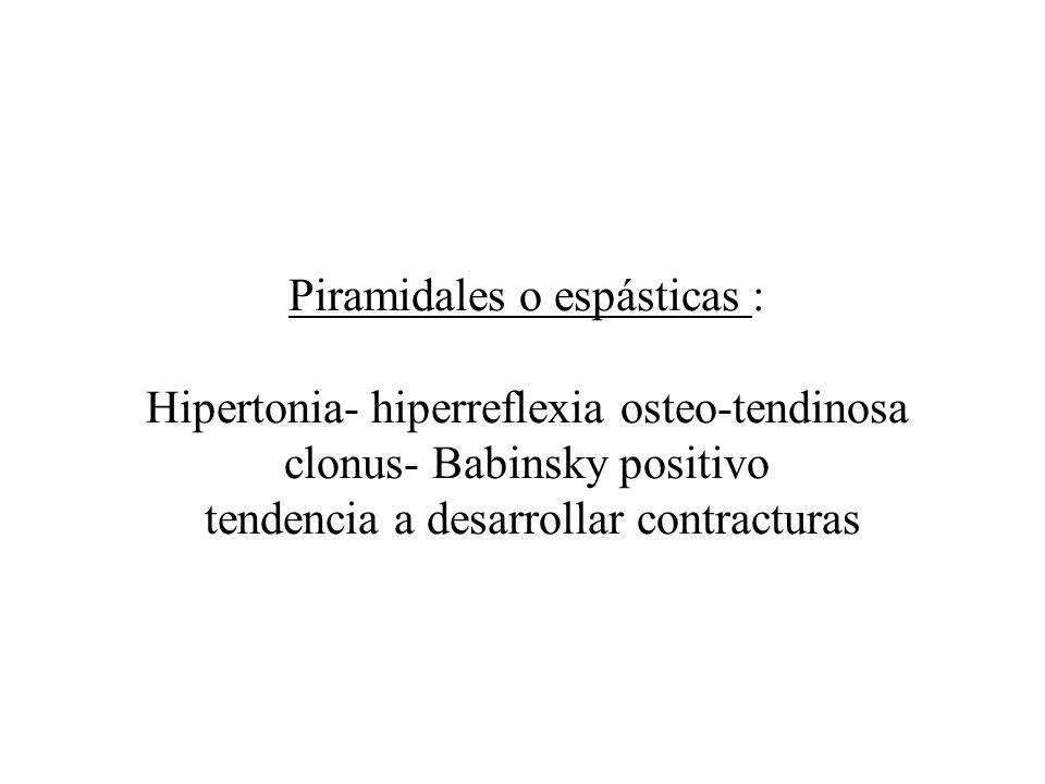Piramidales o espásticas : Hipertonia- hiperreflexia osteo-tendinosa clonus- Babinsky positivo tendencia a desarrollar contracturas
