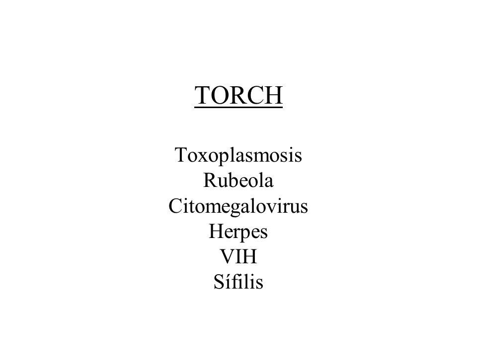TORCH Toxoplasmosis Rubeola Citomegalovirus Herpes VIH Sífilis