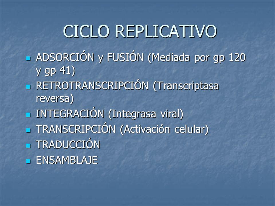 CICLO REPLICATIVO ADSORCIÓN y FUSIÓN (Mediada por gp 120 y gp 41)
