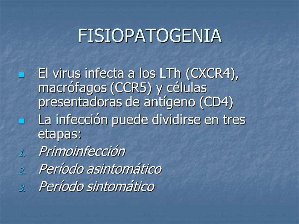 FISIOPATOGENIA El virus infecta a los LTh (CXCR4), macrófagos (CCR5) y células presentadoras de antígeno (CD4)