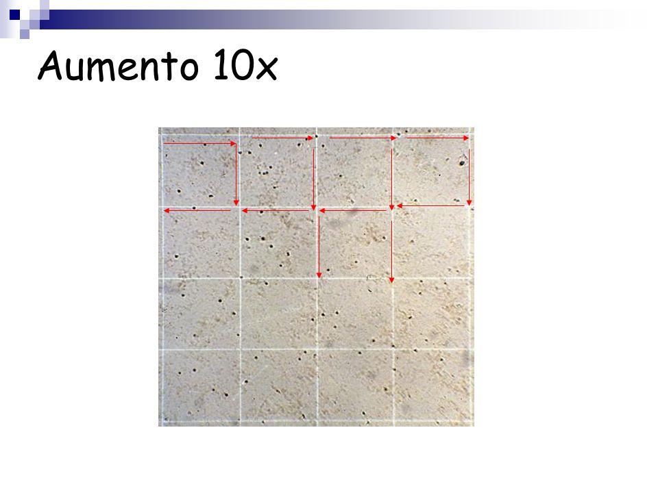 Aumento 10x