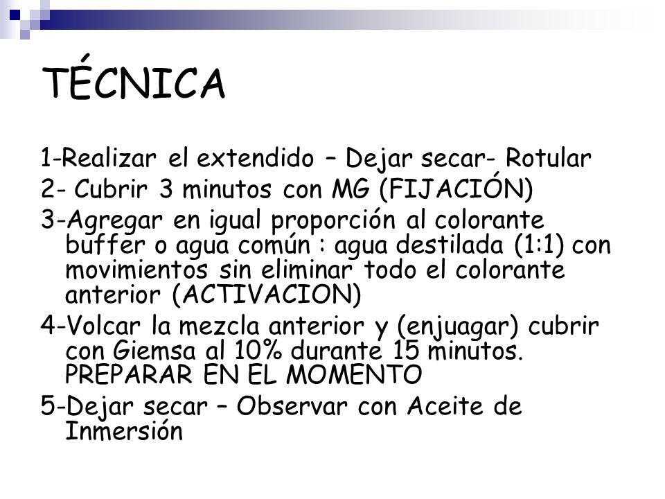 TÉCNICA 1-Realizar el extendido – Dejar secar- Rotular
