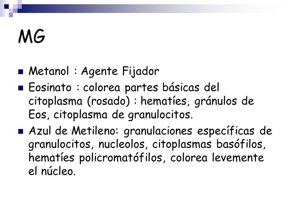 MG Metanol : Agente Fijador