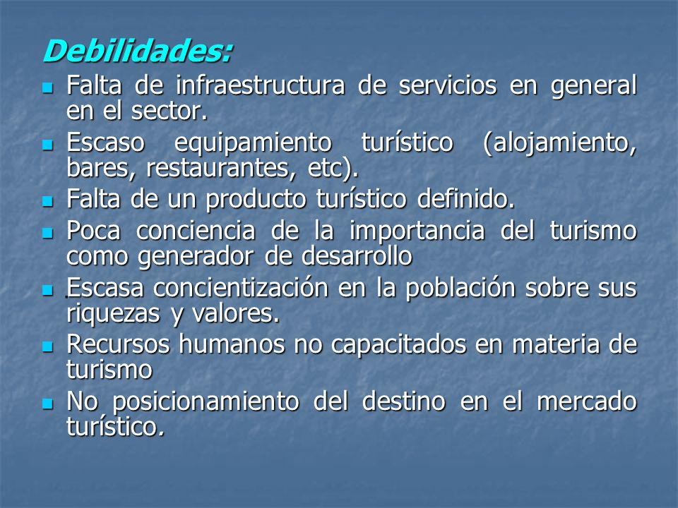 Debilidades: Falta de infraestructura de servicios en general en el sector. Escaso equipamiento turístico (alojamiento, bares, restaurantes, etc).