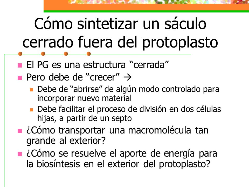 Cómo sintetizar un sáculo cerrado fuera del protoplasto