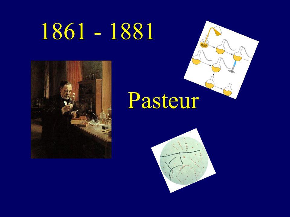 1861 - 1881 Pasteur