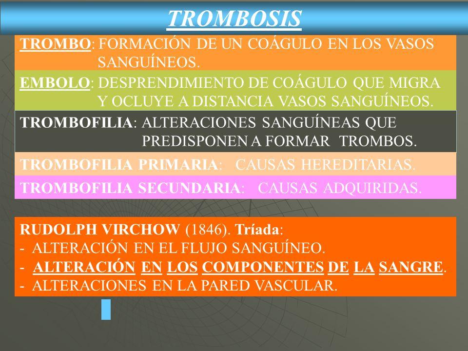 TROMBOSIS TROMBO: FORMACIÓN DE UN COÁGULO EN LOS VASOS SANGUÍNEOS.
