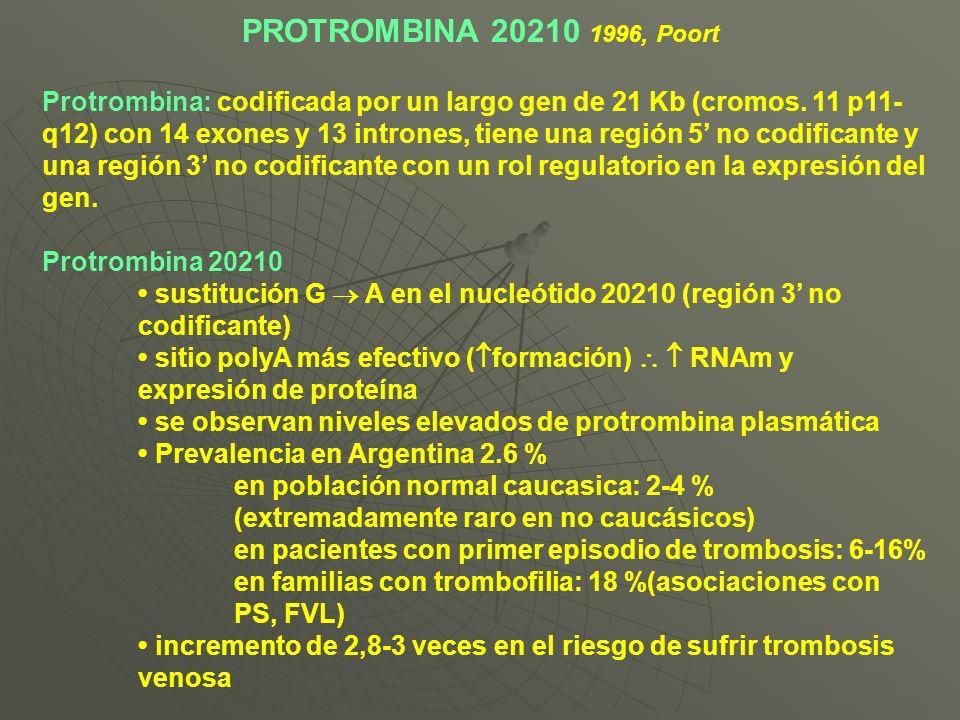PROTROMBINA 20210 1996, Poort