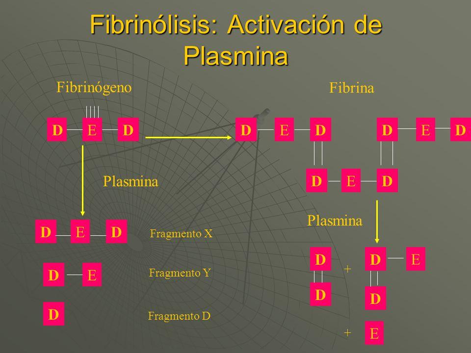 Fibrinólisis: Activación de Plasmina