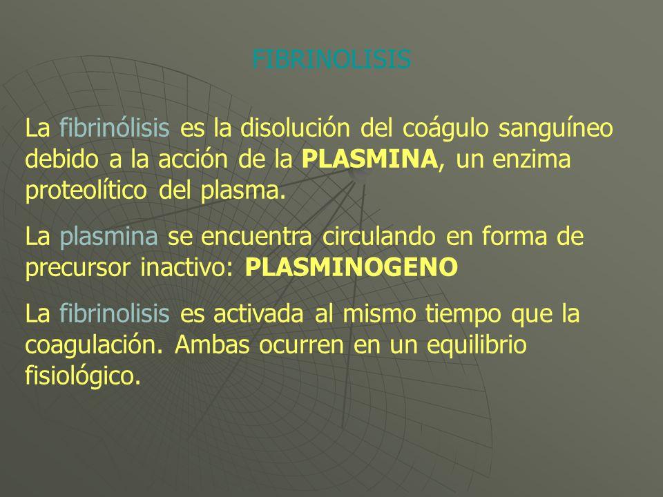 FIBRINOLISIS La fibrinólisis es la disolución del coágulo sanguíneo debido a la acción de la PLASMINA, un enzima proteolítico del plasma.
