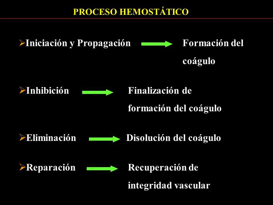 Inhibición Finalización de formación del coágulo