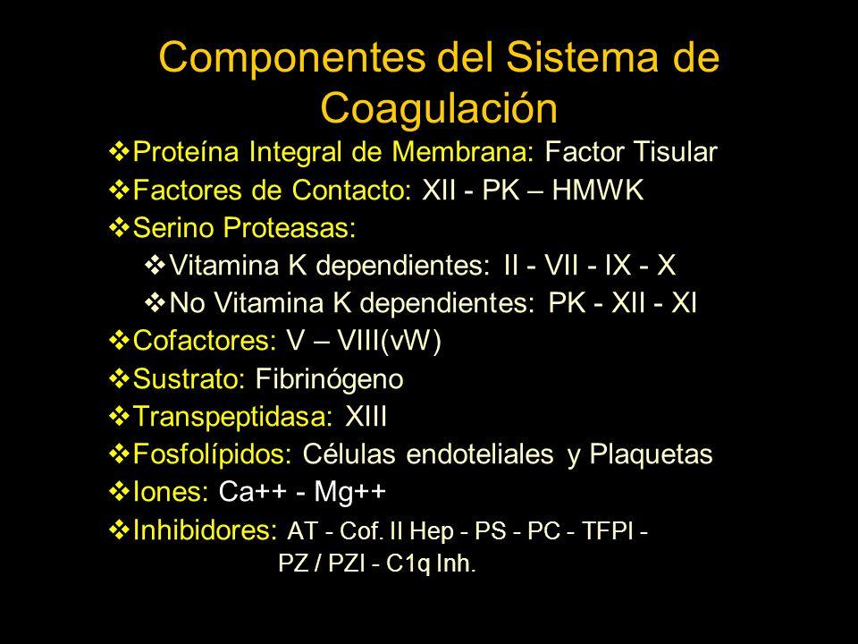 Componentes del Sistema de Coagulación
