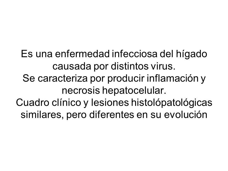 Es una enfermedad infecciosa del hígado causada por distintos virus