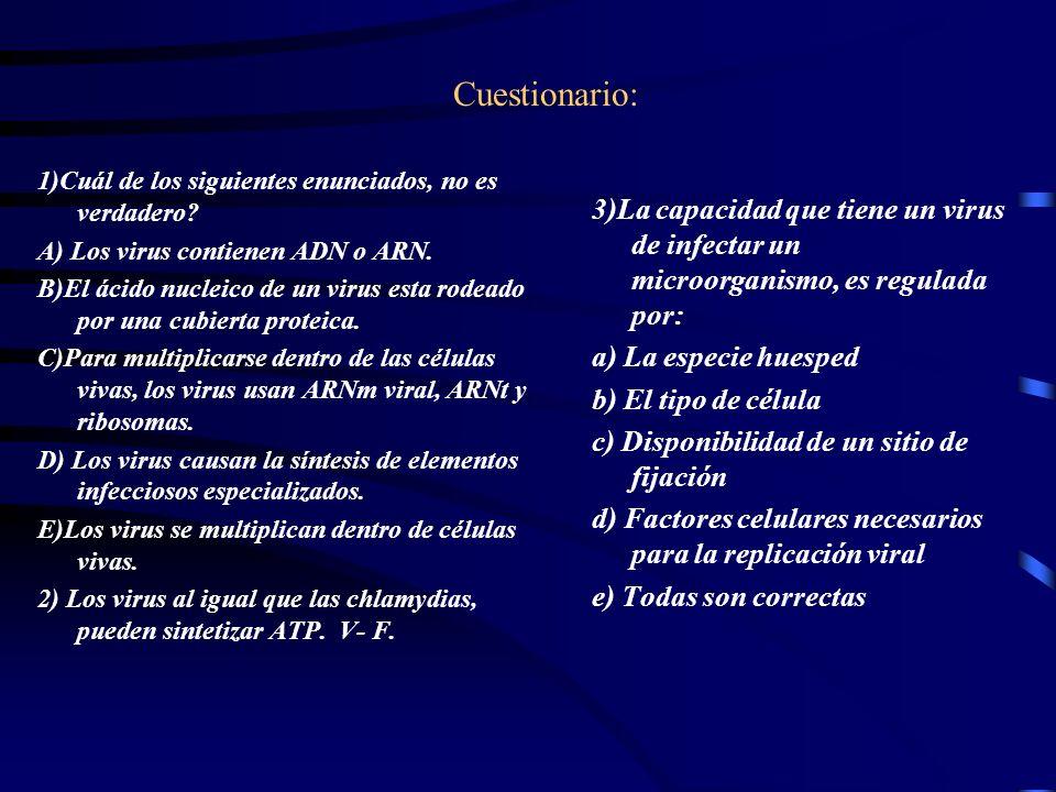 Cuestionario: 1)Cuál de los siguientes enunciados, no es verdadero A) Los virus contienen ADN o ARN.