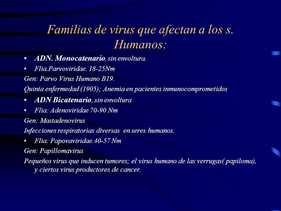 Familias de virus que afectan a los s. Humanos:
