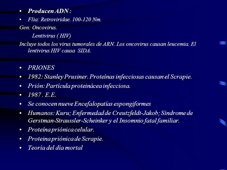 1982: Stanley Prusiner. Proteínas infecciosas causan el Scrapie.