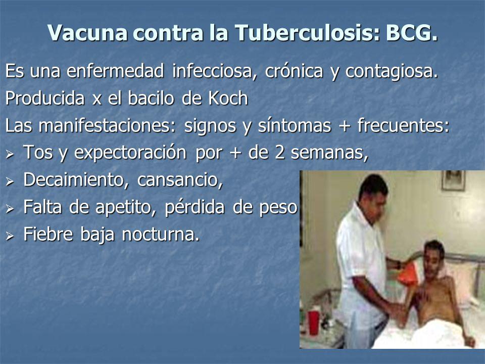 Vacuna contra la Tuberculosis: BCG.