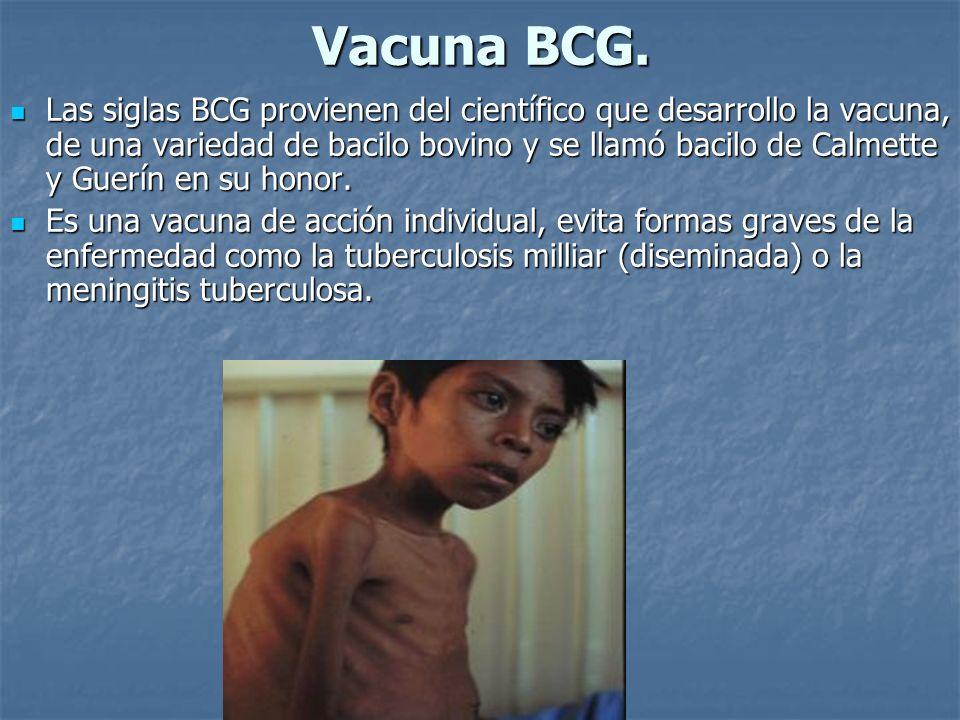 Vacuna BCG.