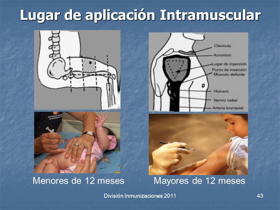 Lugar de aplicación Intramuscular