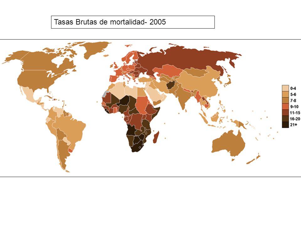Tasas Brutas de mortalidad- 2005