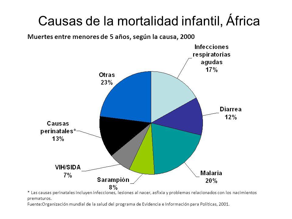 Causas de la mortalidad infantil, África