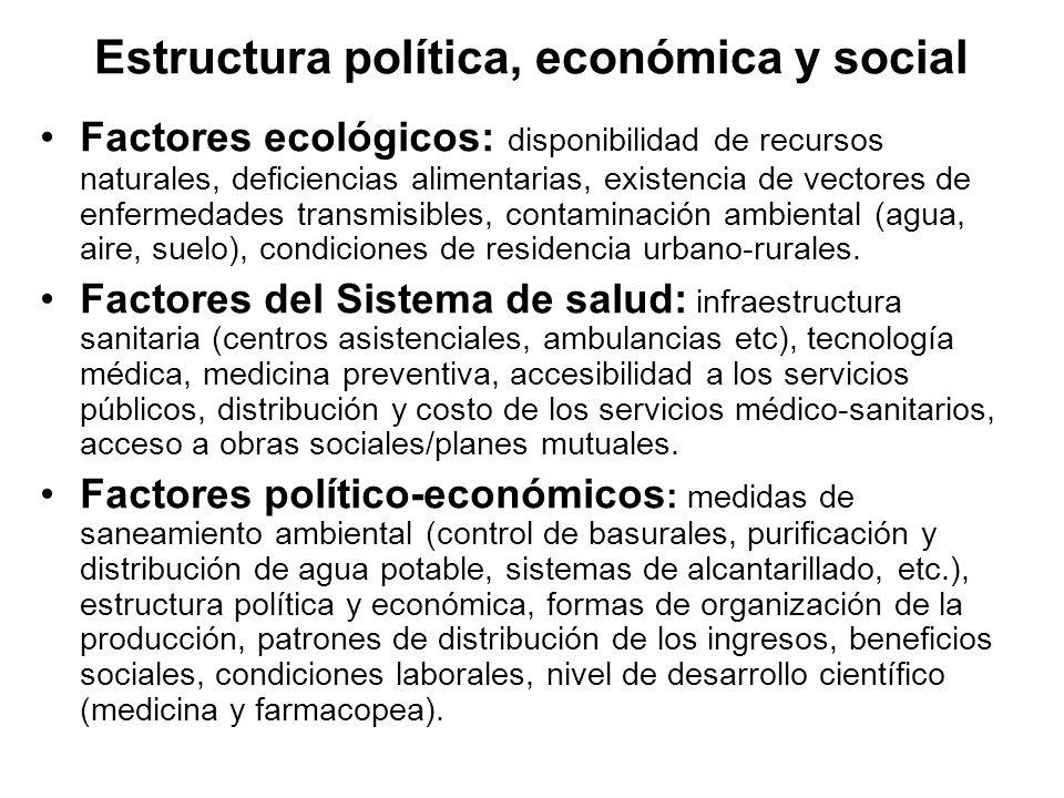 Estructura política, económica y social