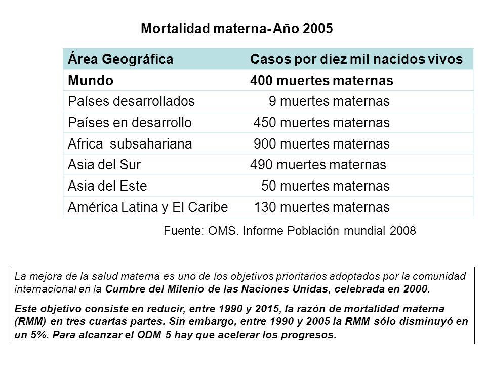 Mortalidad materna- Año 2005 Área Geográfica