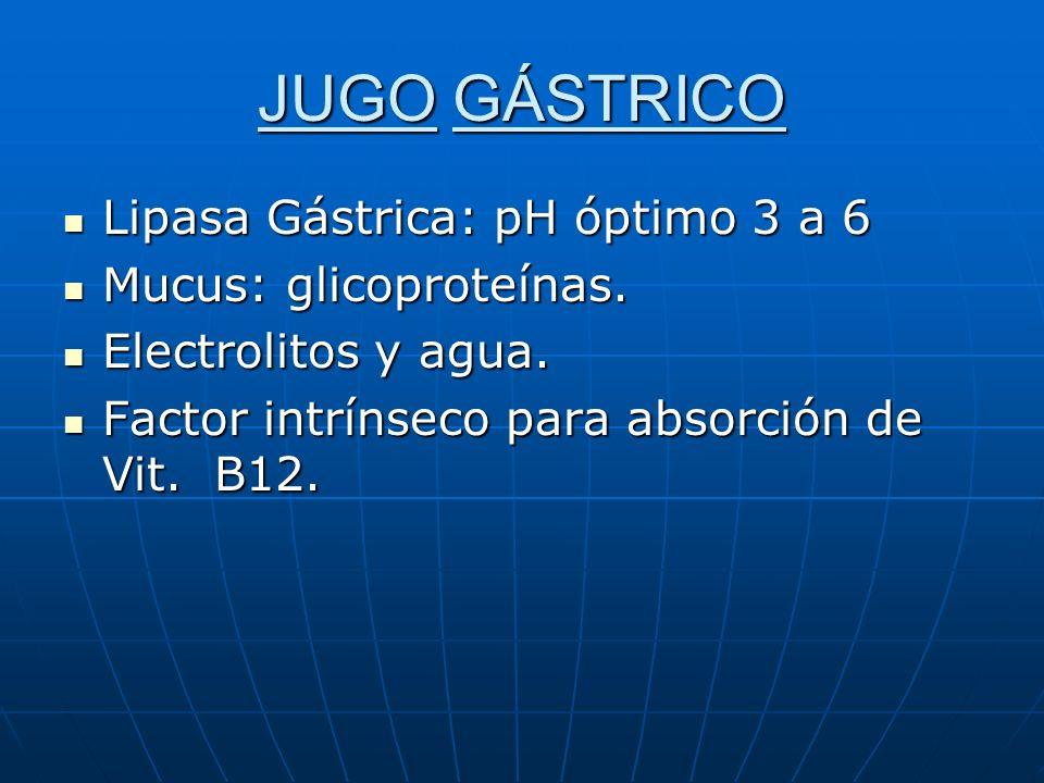 JUGO GÁSTRICO Lipasa Gástrica: pH óptimo 3 a 6 Mucus: glicoproteínas.