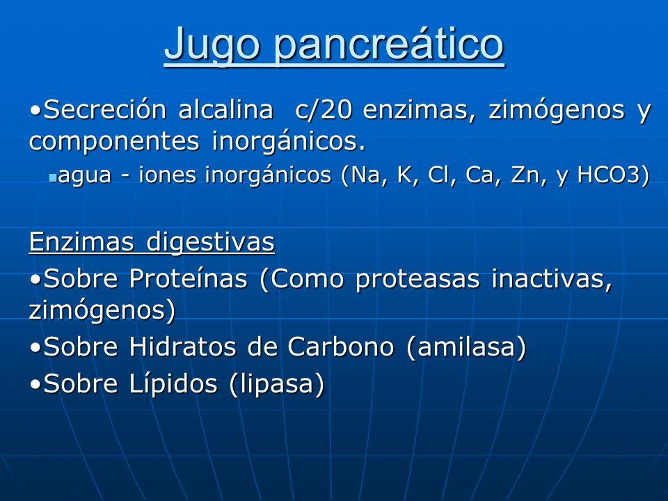 Jugo pancreático Secreción alcalina c/20 enzimas, zimógenos y componentes inorgánicos. agua - iones inorgánicos (Na, K, Cl, Ca, Zn, y HCO3)