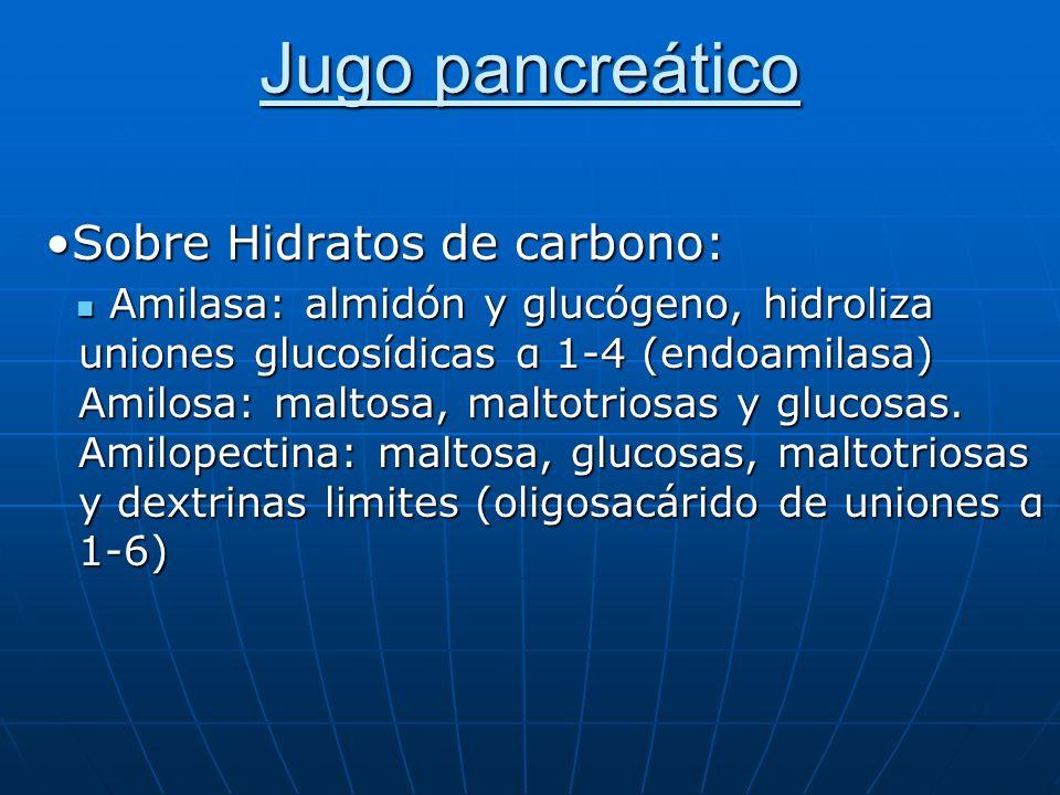 Jugo pancreático Sobre Hidratos de carbono: