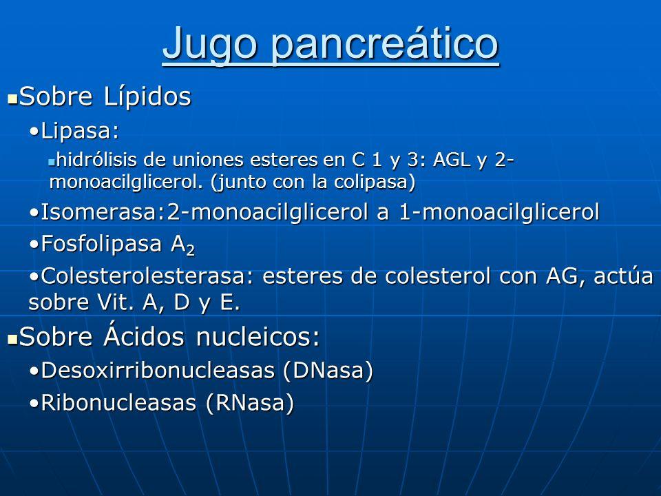 Jugo pancreático Sobre Lípidos Sobre Ácidos nucleicos: Lipasa:
