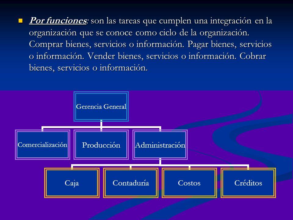 Por funciones: son las tareas que cumplen una integración en la organización que se conoce como ciclo de la organización.