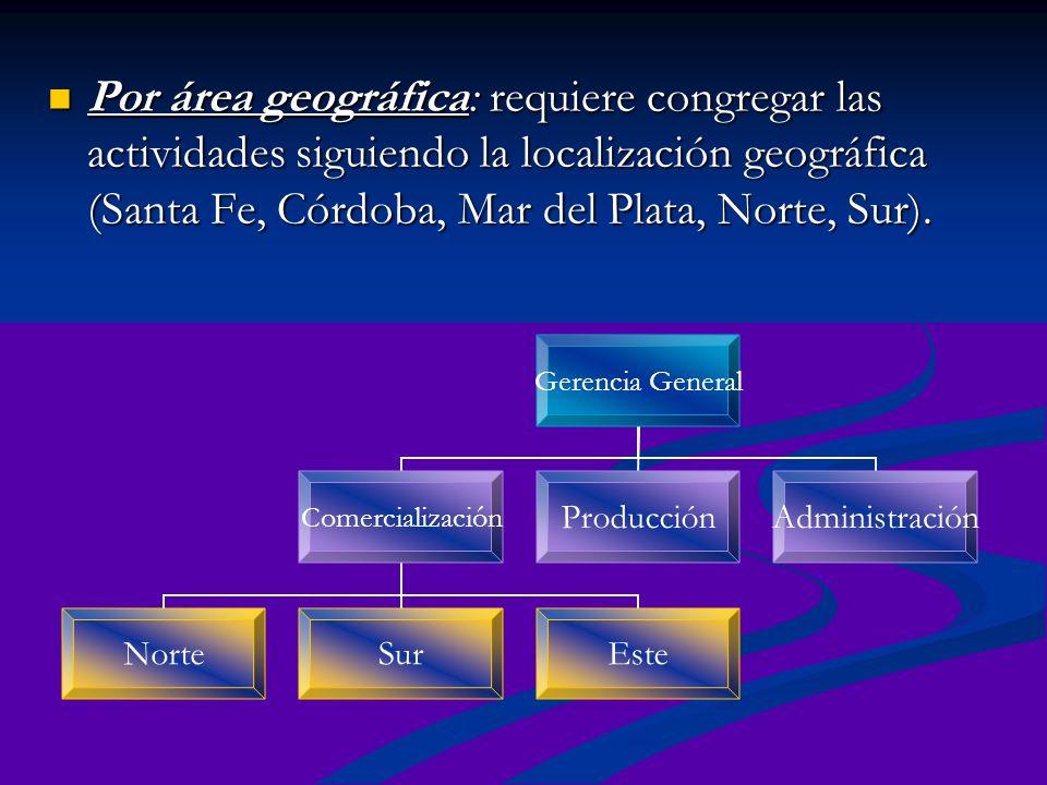 Por área geográfica: requiere congregar las actividades siguiendo la localización geográfica (Santa Fe, Córdoba, Mar del Plata, Norte, Sur).