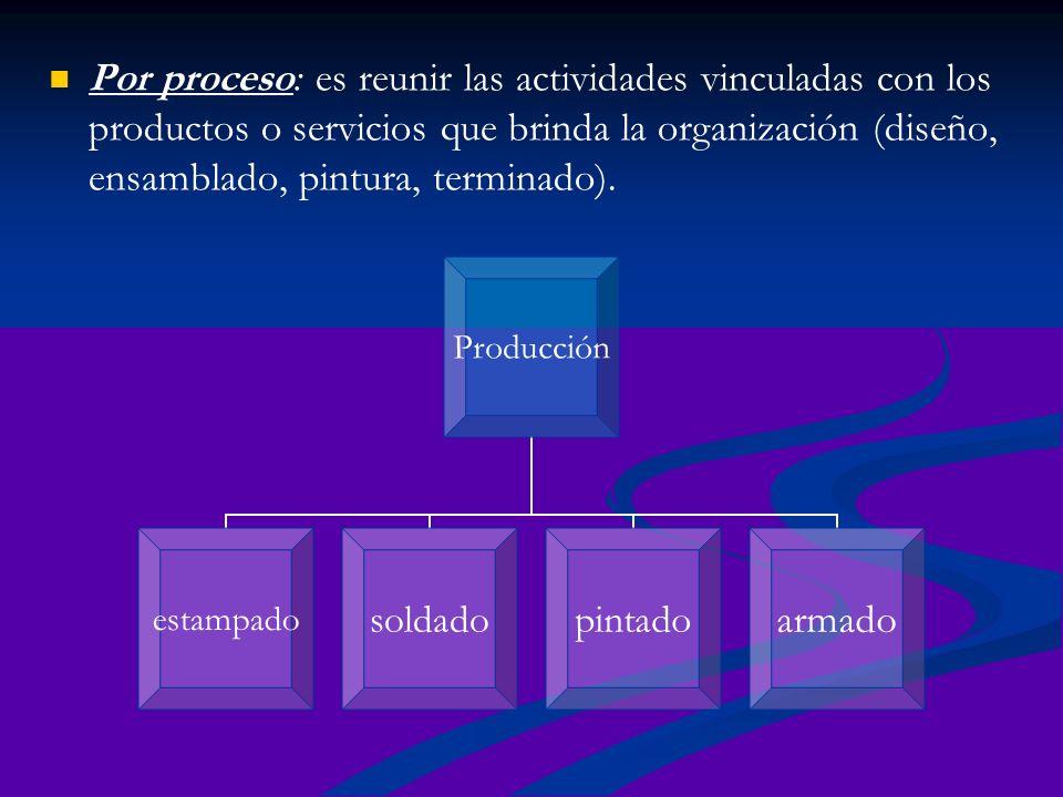 Por proceso: es reunir las actividades vinculadas con los productos o servicios que brinda la organización (diseño, ensamblado, pintura, terminado).