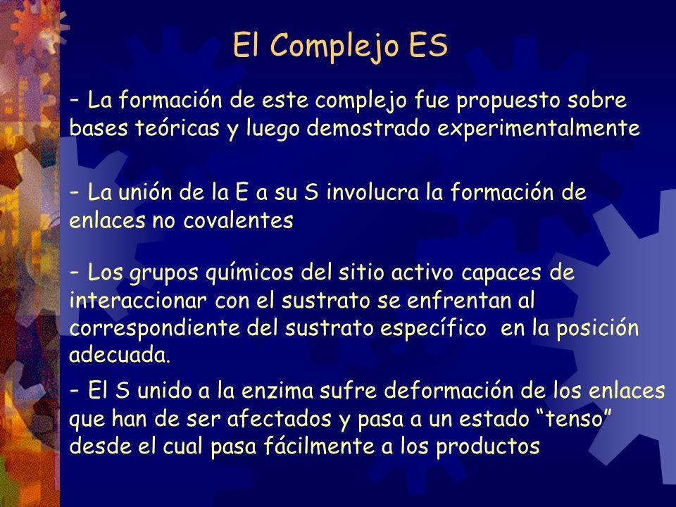 El Complejo ES - La formación de este complejo fue propuesto sobre bases teóricas y luego demostrado experimentalmente.