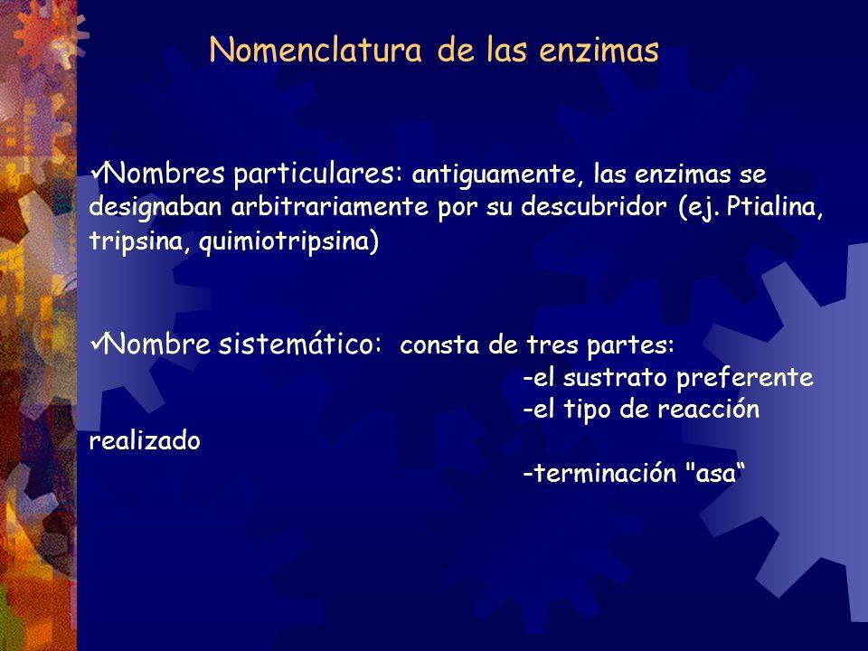 Nomenclatura de las enzimas