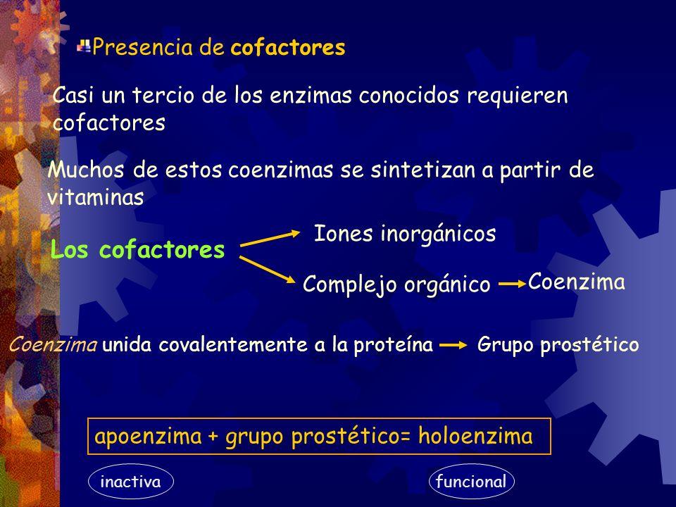 Los cofactores Presencia de cofactores