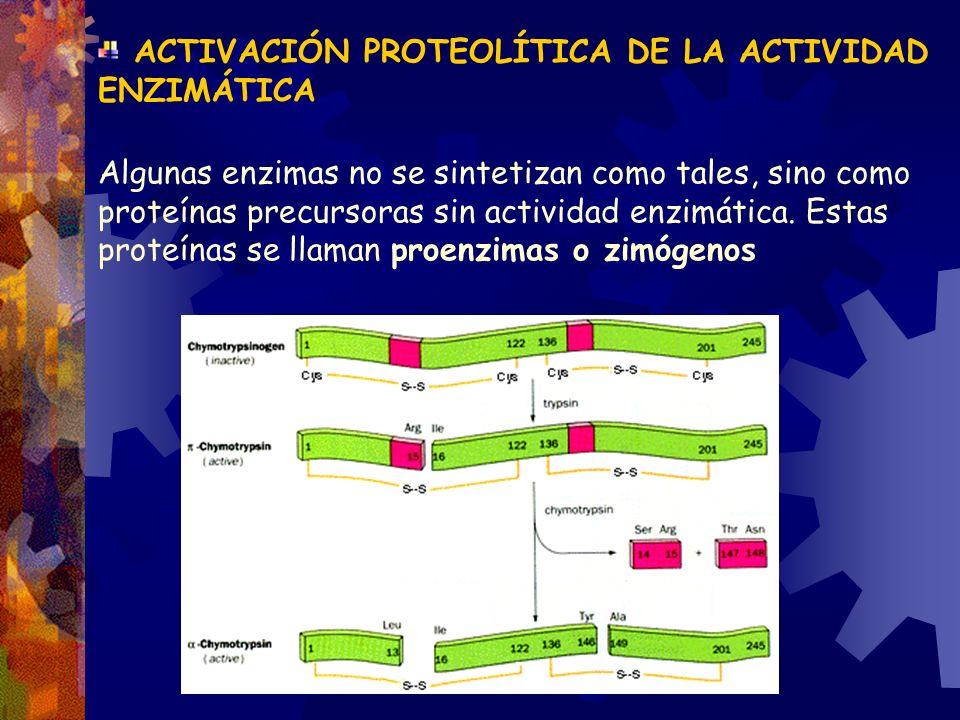 ACTIVACIÓN PROTEOLÍTICA DE LA ACTIVIDAD ENZIMÁTICA