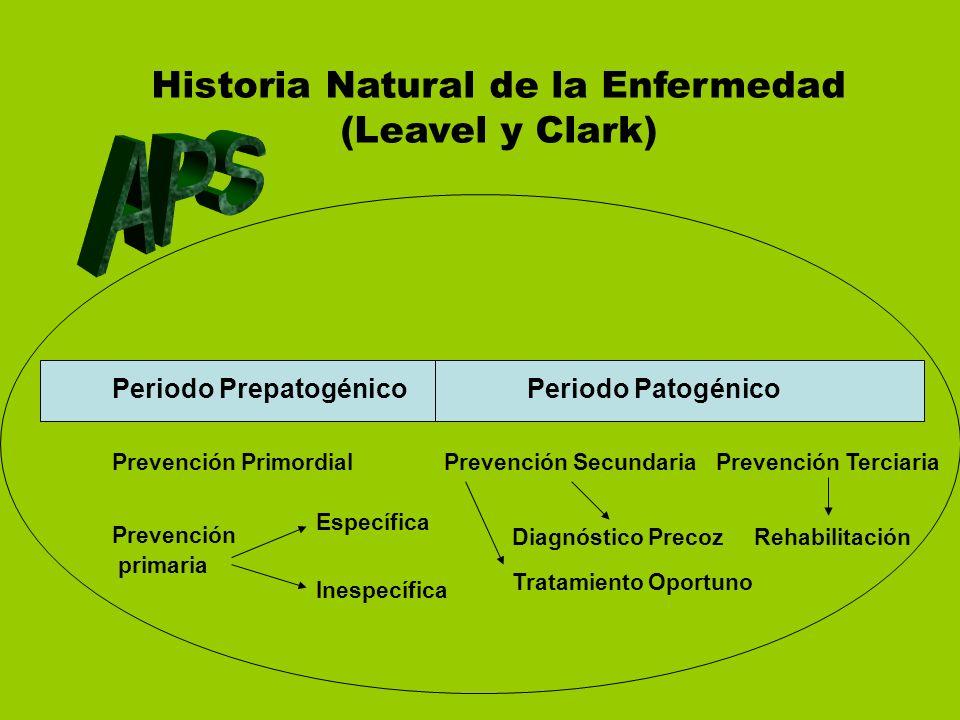 Historia Natural de la Enfermedad (Leavel y Clark)