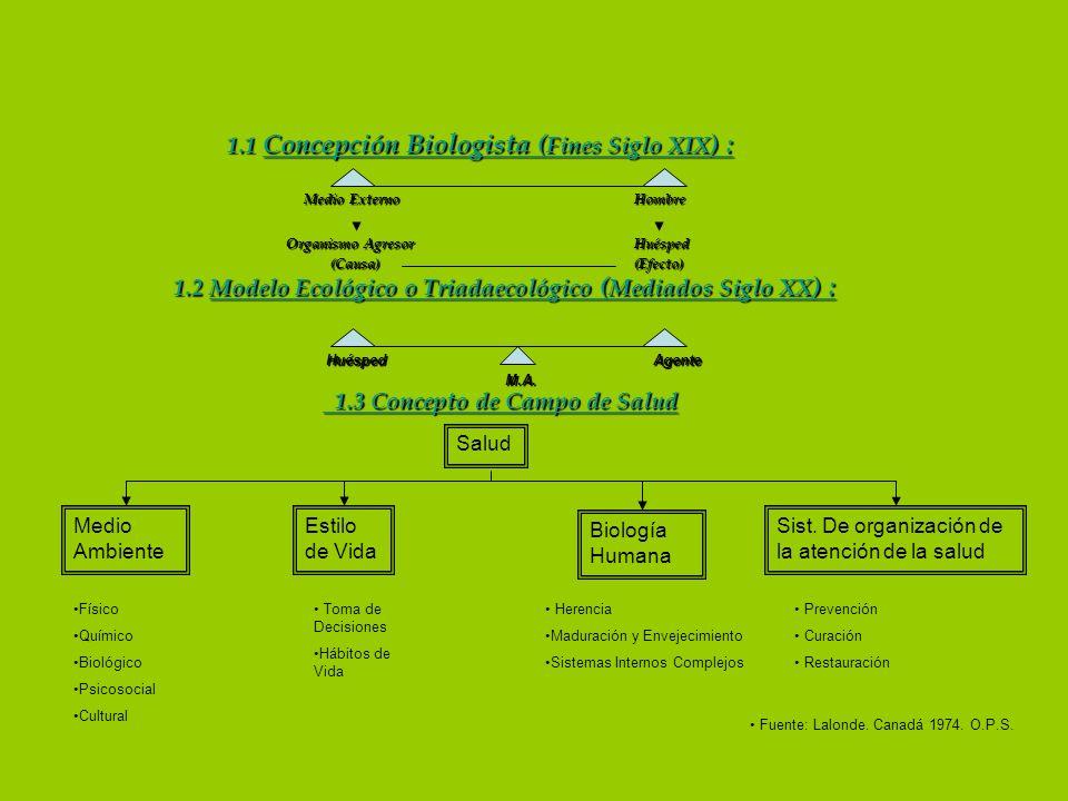 1.1 Concepción Biologista (Fines Siglo XIX) :