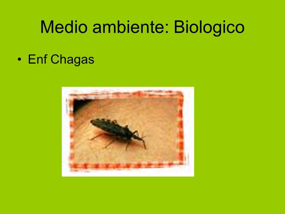 Medio ambiente: Biologico