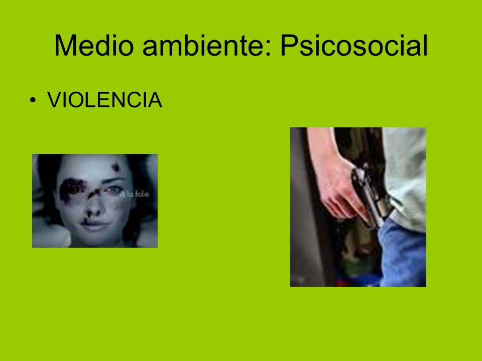 Medio ambiente: Psicosocial