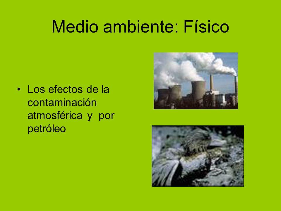 Medio ambiente: Físico