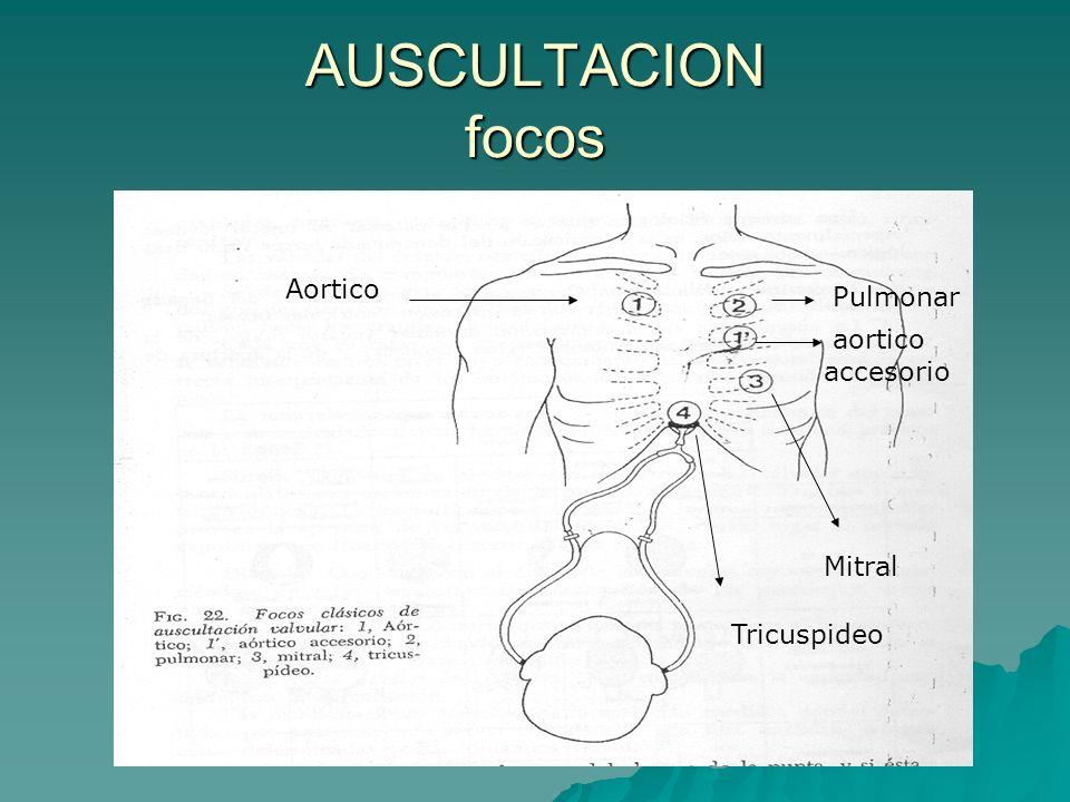 AUSCULTACION focos Aortico Pulmonar aortico accesorio Mitral