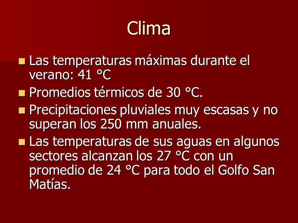 Clima Las temperaturas máximas durante el verano: 41 °C