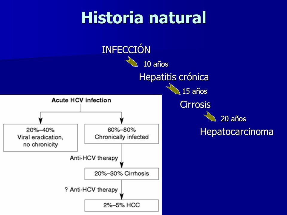 Historia natural INFECCIÓN 10 años Hepatitis crónica 15 años Cirrosis