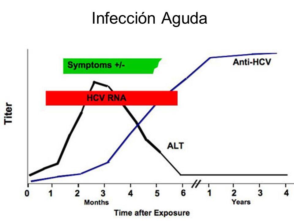Infección Aguda