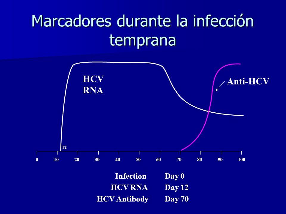 Marcadores durante la infección temprana