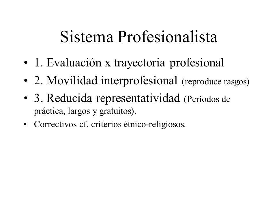 Sistema Profesionalista